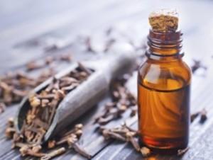 clove oil, back to school, immunity, antioxidant, natural health